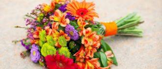 Какие цветы подарить