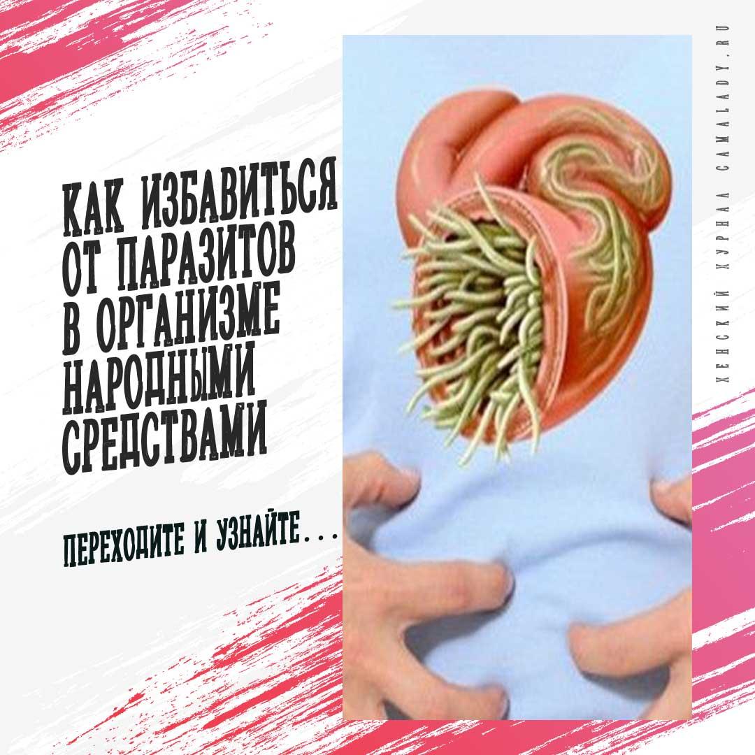 Как избавиться от паразитов в организме народными средствами