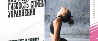 развить гибкость спины
